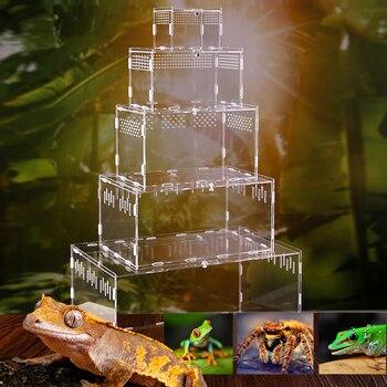 Reptile Breeding Terrarium  1