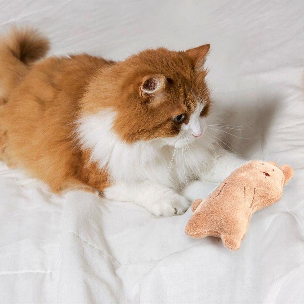 Тренинг Собаки ловкость игрушки Поставки Забавный Кот игрушка, прекрасная маленькая белая игрушка плюшевая зверушка-мята Дразнилка для котенка играть интерактивная игрушка-4
