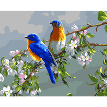 WONZOM Couple Bird DIY Oil Painting By Number for Kids and Adults, Wall Art picture,Oil Kit Beginner 16x20inch
