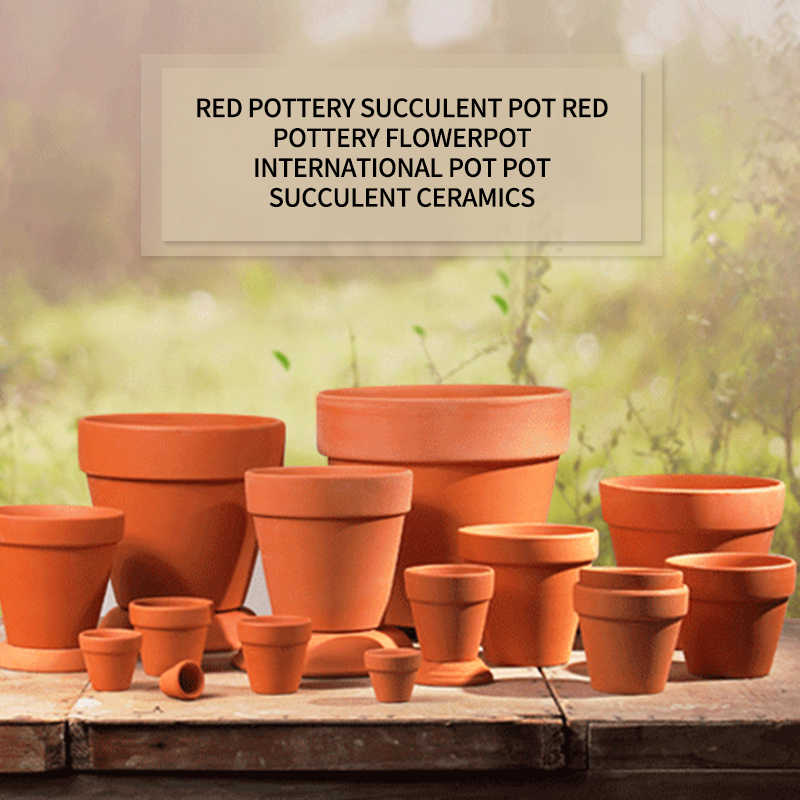 10Pcs Mini Terracotta Pot Clay Ceramic Pottery Planter Cactus Flower Pots Succulent Nursery Terracotta Pot Great
