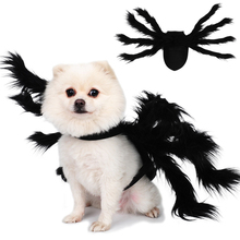 Dress Dog Halloween Dog-Costumes Spider-Wing Cats for Puppies Pet-Cat Cute