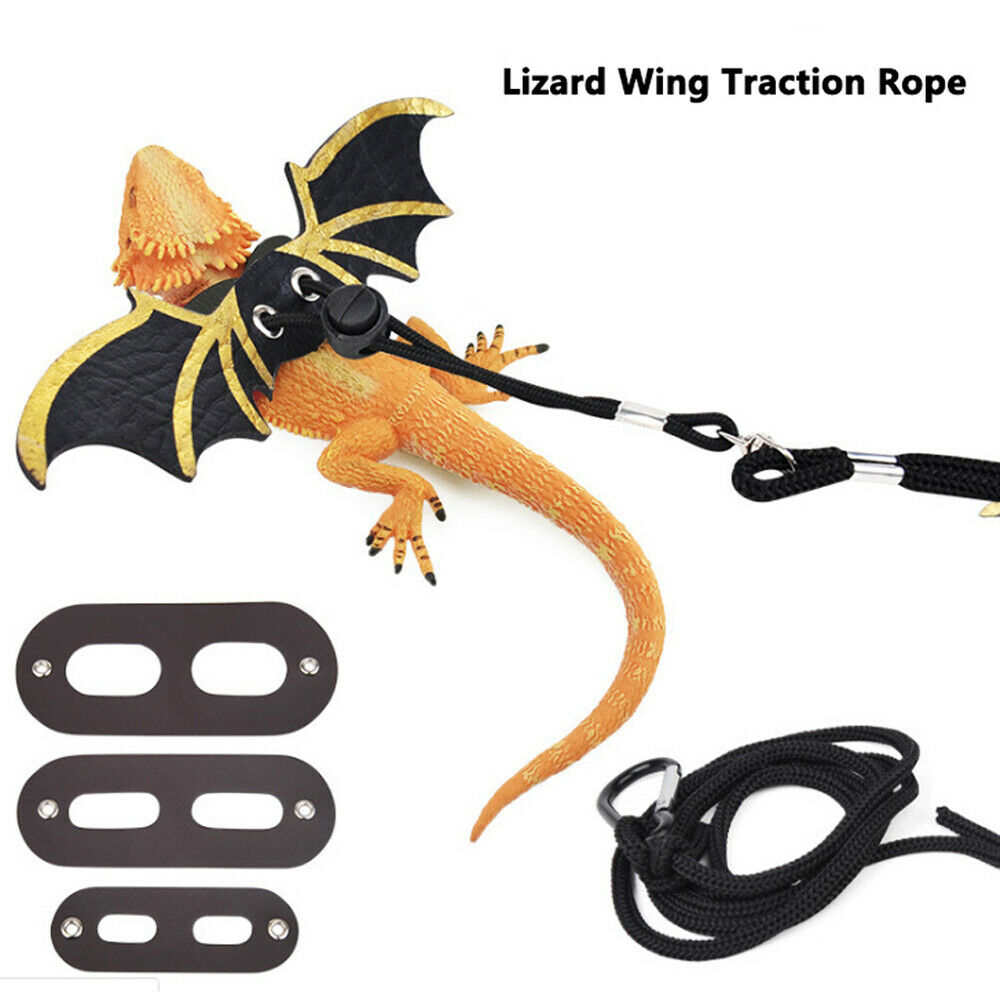 Small Animals Adjustable Collars Harnesses Leashes Lizard Bearded Dragon Reptile Critter Pet Leash Harness Dragon Wings