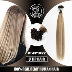 U Tip Keratin Fusion Remy Human Hair Extensions On Capsule Balayage Highlight Color Straight European Hair 16-22 inch 0.8g/s 40g