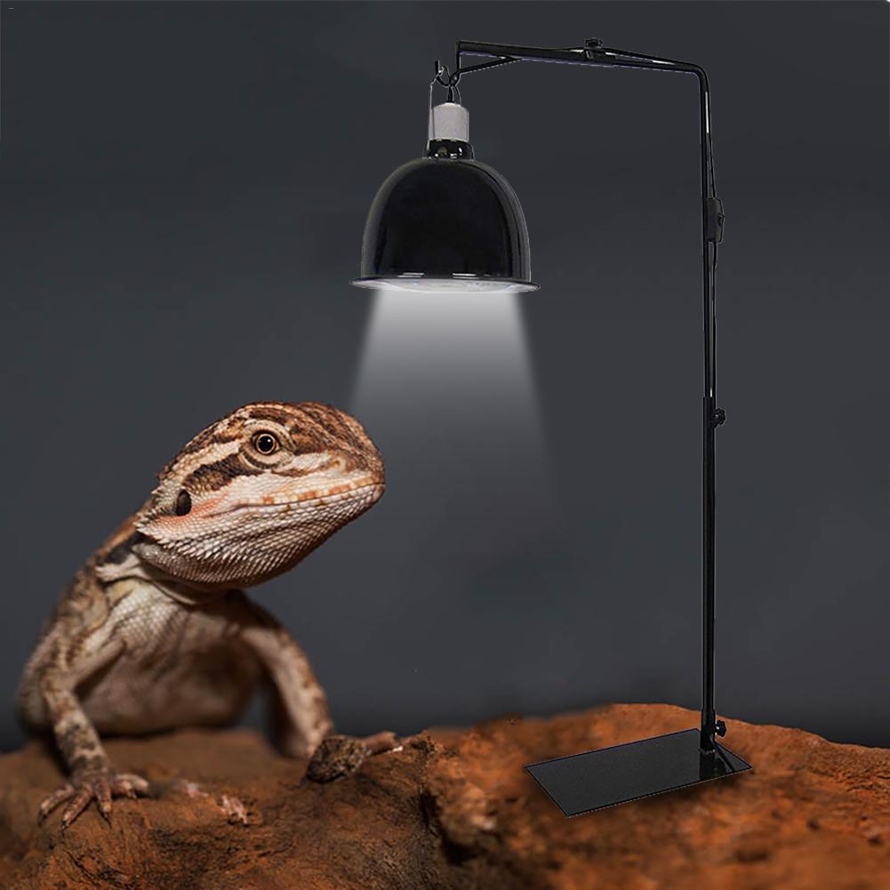 E27 Luz Domo Reflector Reptil Bombilla Sostenedor de L/ámpara Mascota Tortuga