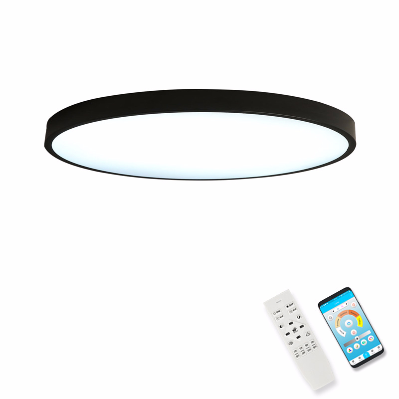 Round LED Modern 5CM Thin Ceiling Lights For Dining Room Balcony Indoor Home Lighting Kitchen Plafon