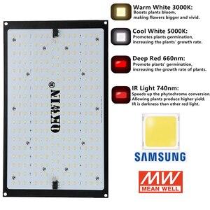 Предварительная продажа 2400 Вт/1200 Вт LED Grow Light Quantum Board полный спектр Samsung LM301B 3000K/5000K + 660nm Meanwell драйвер DIY части