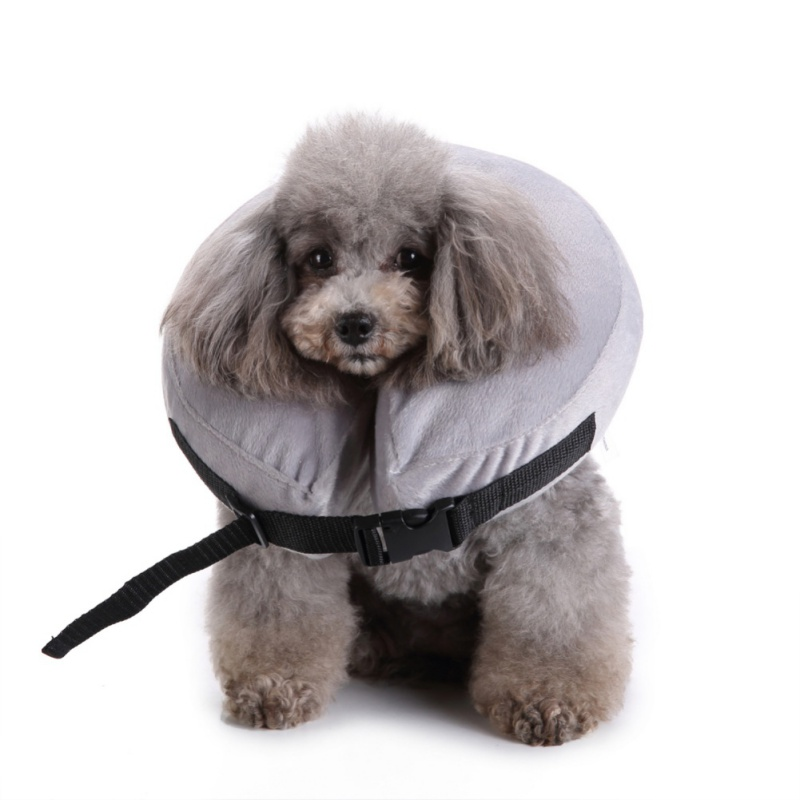New Inflatable Pet Collars Dog And Cat With Zipper Plush Size Adjustable Antibite Healing Protective Neck Ring