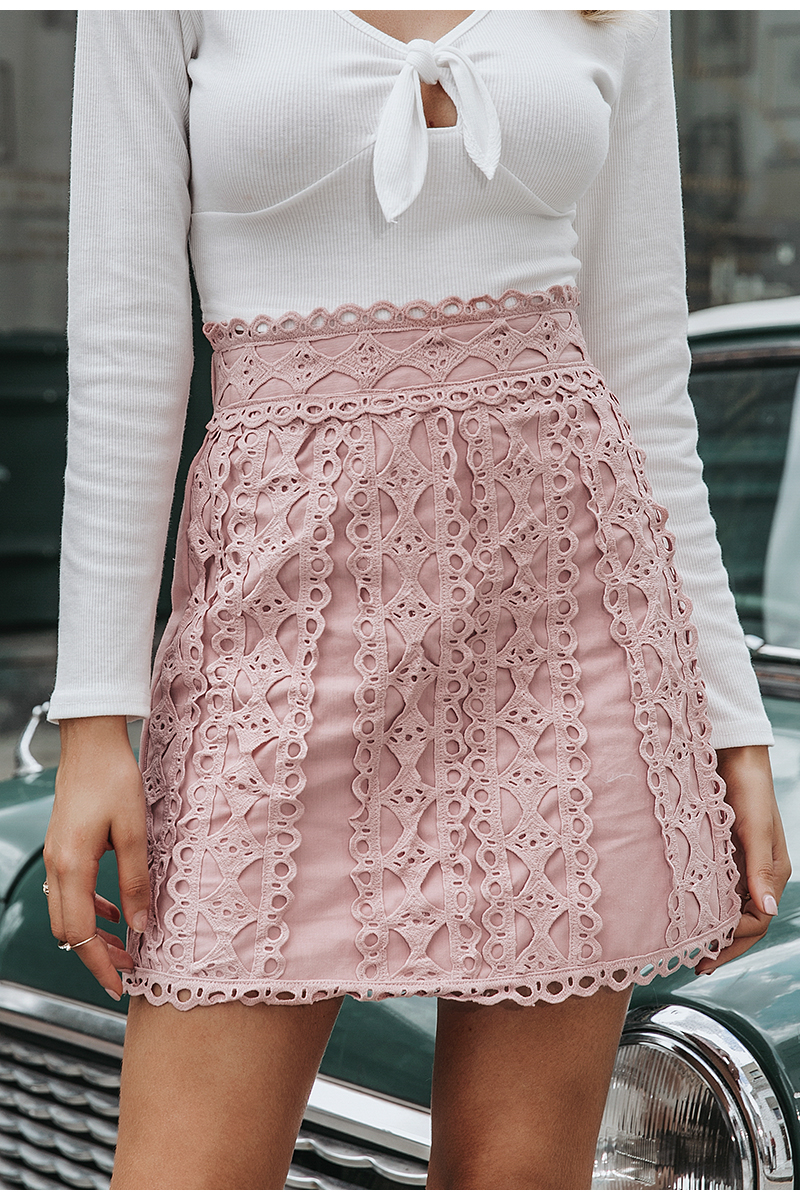 Embroidery Cotton A-line Mini Bottoms Pink Skirt