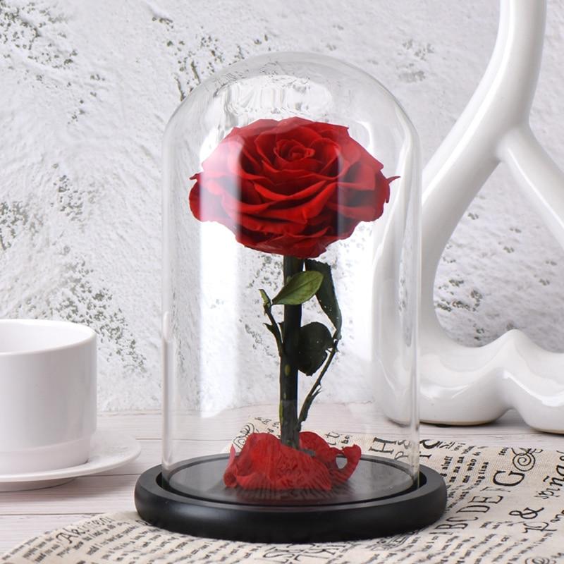 6 стилей,, свежие цветы красавицы и чудовища, красные вечные розы в стеклянном куполе, Рождественский подарок на день Святого Валентина, Прямая поставка - Цвет: red rose