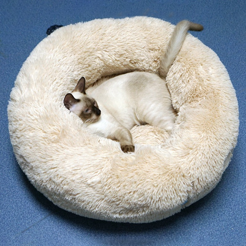 calming bed for cats