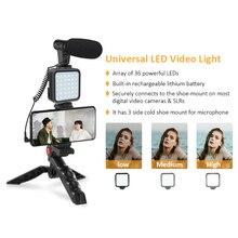 Staffa stabilizzatore per impugnatura di registrazione Kit Video per Smartphone microfono supporto per treppiede a LED per fotografia di registrazione