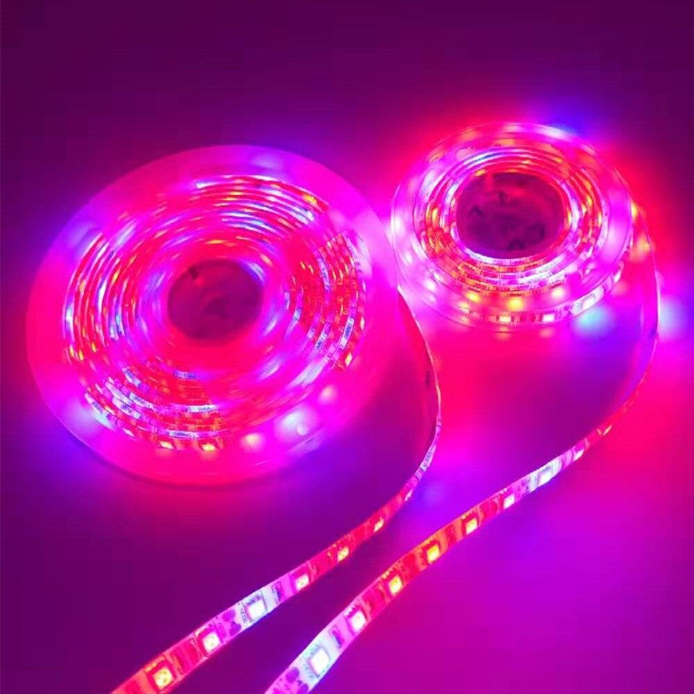 LED Plant Growth Light Strip 5M 5050 Full Spectrum 5