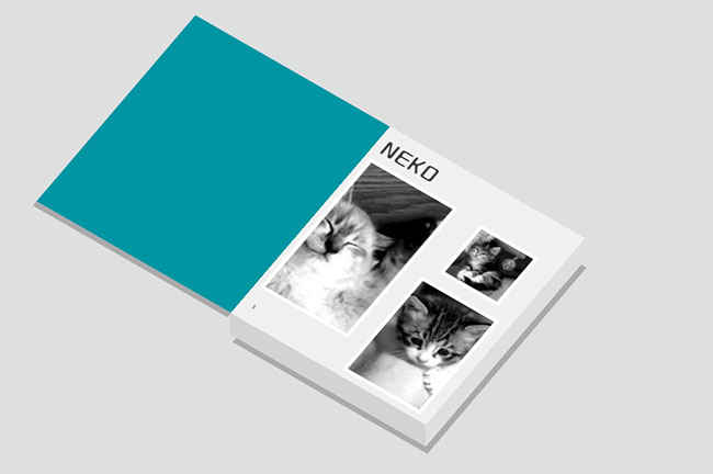 JS点击书本相册翻页代码