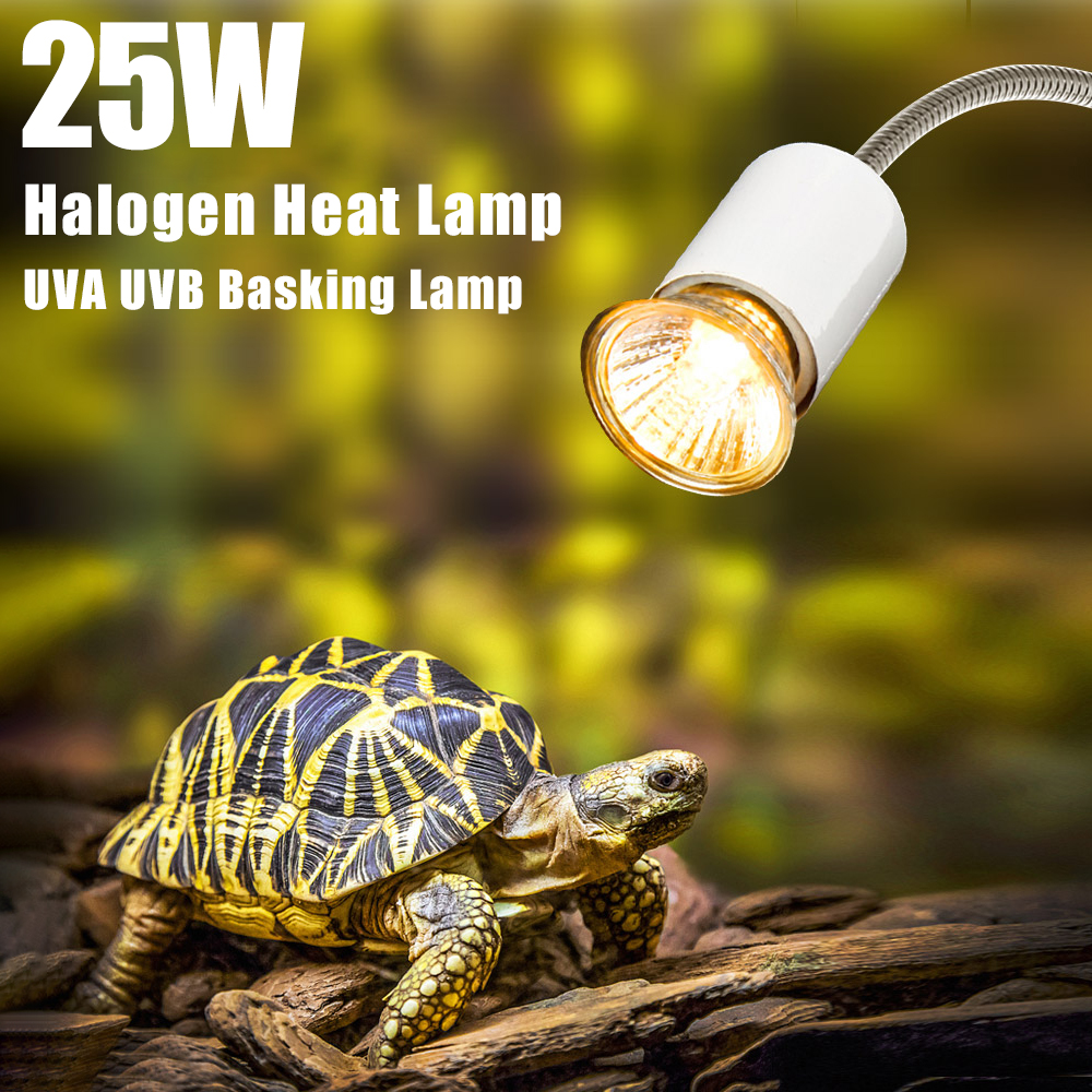 uva uvb reptile lamp holder turtle tortoises basking heating lamp kit aquarium e27 thread bulb 25w tortoise halogen heat lamp