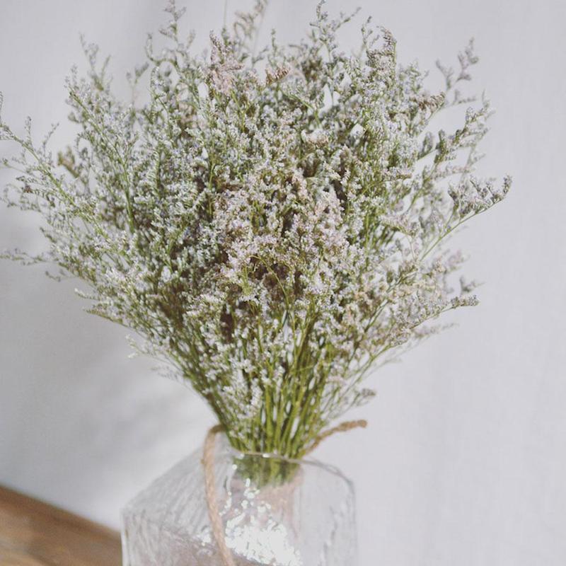 55 см Lover трава Натуральный Свежий сушеная Сохраненная Танцы цветы, навсегда цветок трава ветка для домашнего декора букет цветов