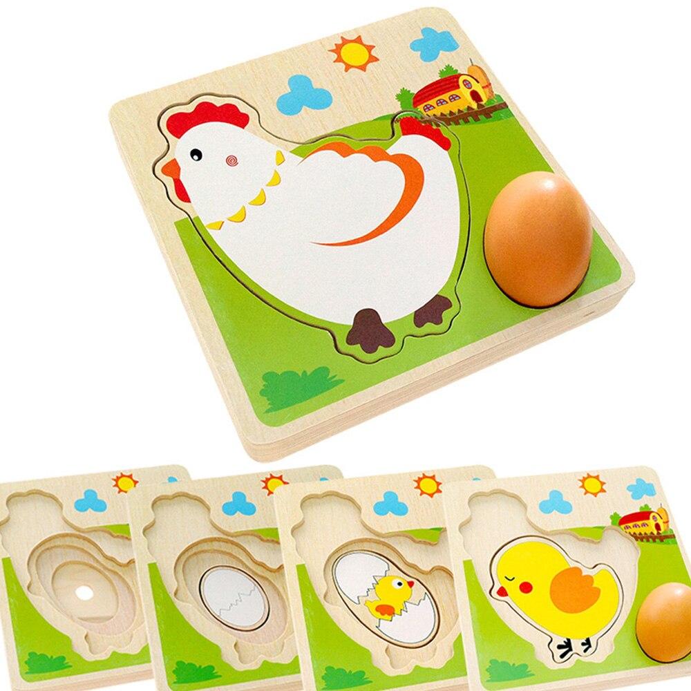 Gà đẻ trứng, quá trình lớn lên gà con bằng gỗ