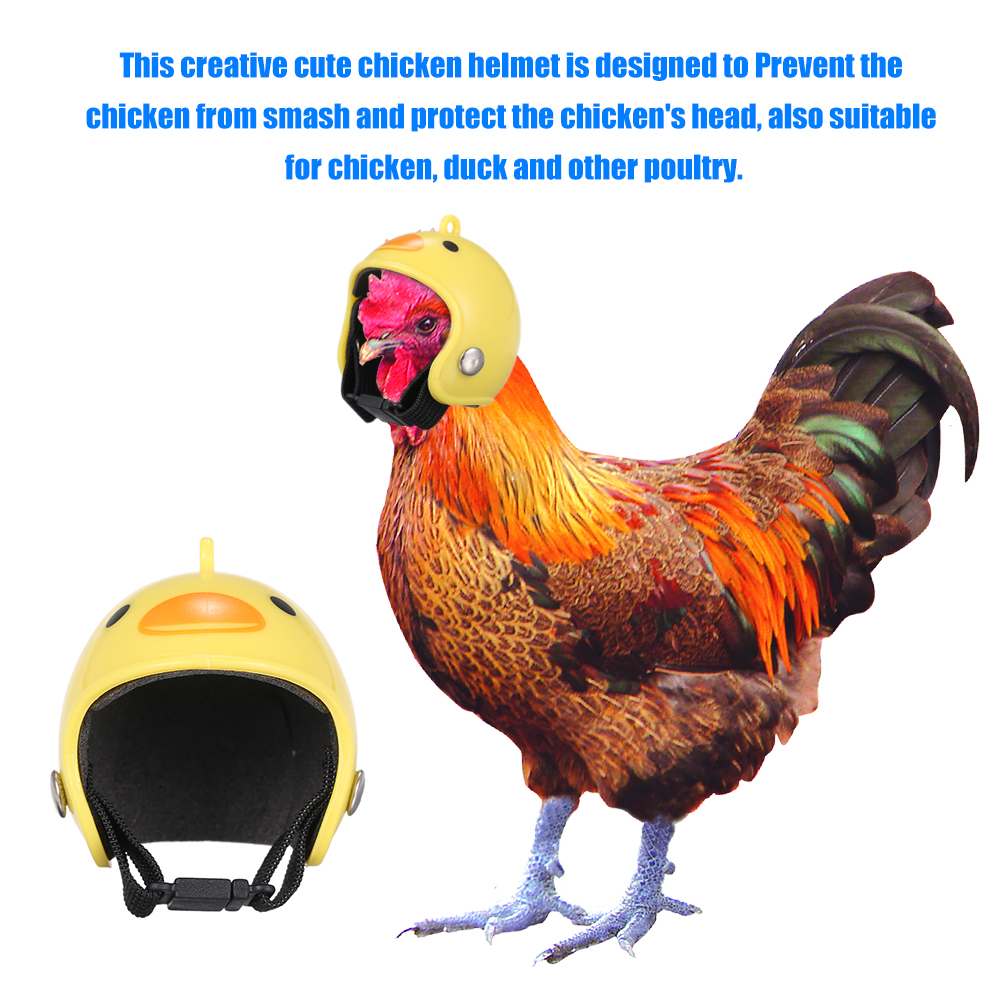 Pet Funny Protective Chicken Helmet Small Pet Hard Hat Bird Hat Headgear Pet Chicken Head Protection For Chicken Duck  Poultry