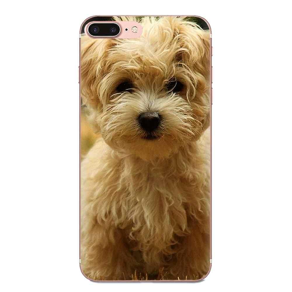 Coque de téléphone peinte j'aime chien maltais pour Samsung Galaxy Note 5 8 9 S3 S4 S5 S6 S7 S8 S9 S10 5G mini Edge Plus Lite