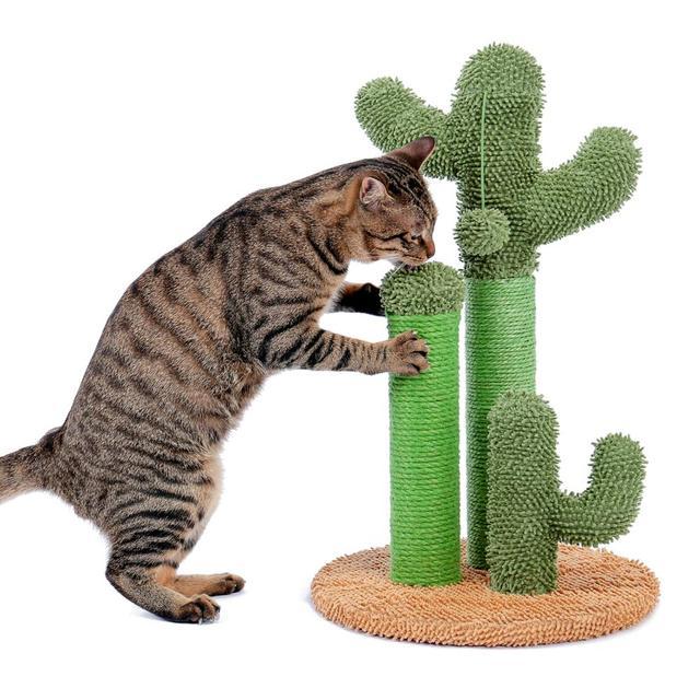Drop Shipping Cat Cactus Tree Pet Cat Tree Toys with Ball Scratcher Posts 4