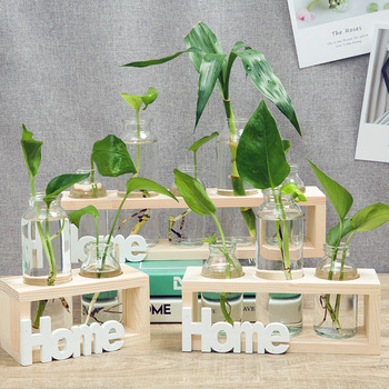ins Nordic hot style wooden crafts creative glass hydroponic vase decoration small fresh desktop