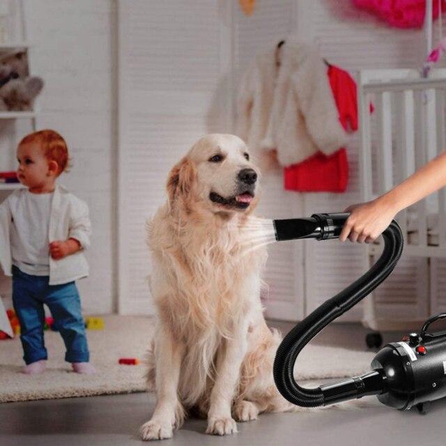 Pet Hair Blow Dryer  6