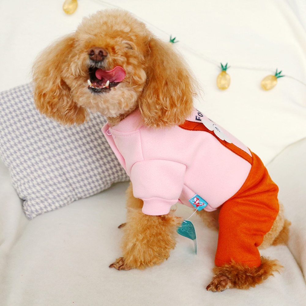 Dog Coat Jacket Solid Warm Dog Clothes Puppy Outfit Pet Cat Jacket Coat Winter Soft Coat Clothing For Small Dogs Chihuahua 5