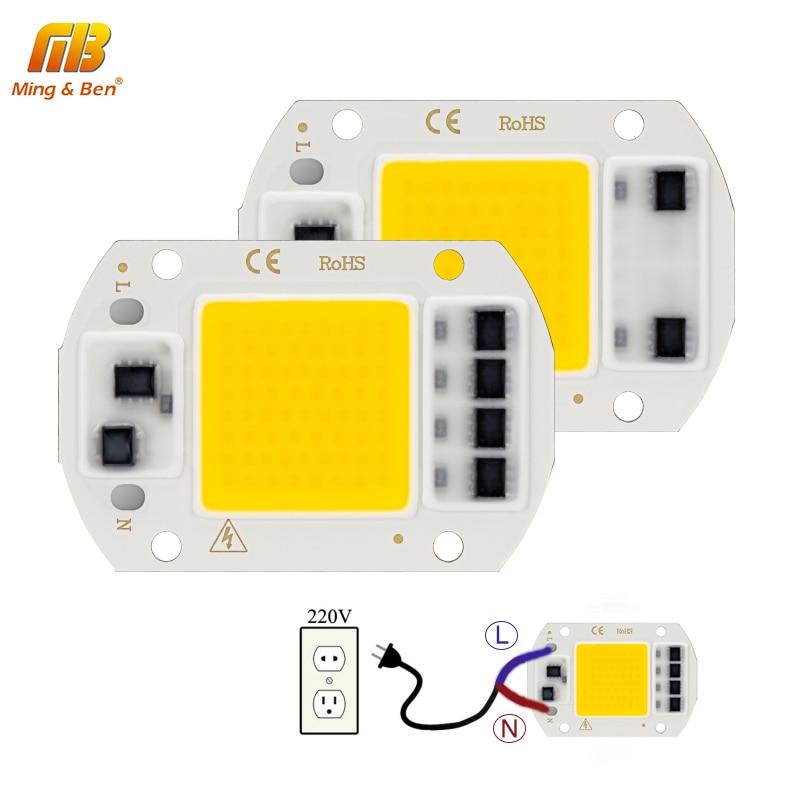 20W 30W 50W LED COB Chip AC 220V Smart IC DIY LED Beads For LED Projection Floodlight Spotlight Warm White Cold White Grow Light