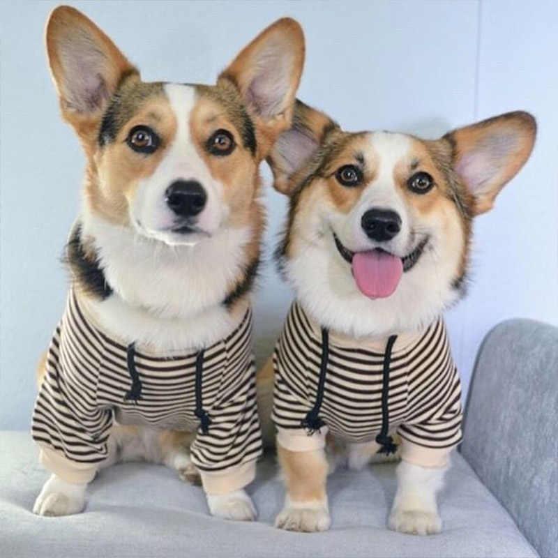 Francese Bulldog Pet Vestiti di Corrispondenza A Strisce Animali Domestici Vestiti Del Cane T-Shirt Autunno Cani Costume di Cotone Pet Abbigliamento Per Cani Cappotto Pug