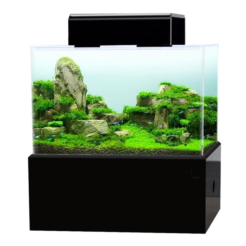 Mini aquarium fish tank dry wet separated bottom filter pump box tropical small fish tank with heating rod LED light