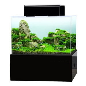 Mini aquarium fish tank dry we