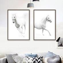 Современный Минимализм стиль hd белая крутая Лошадь Животное