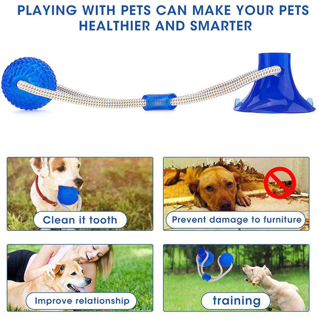Suction Cup Dog Push Toy with Ball Pet Tooth Cleaning Chewing Rubber 2
