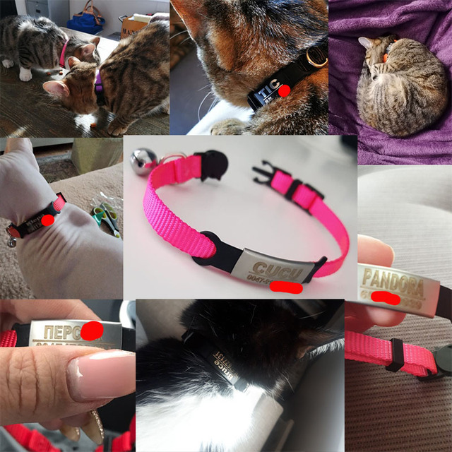 Personalized ID Free Engraving Cat Collar Safety Breakaway Small Dog Cute Nylon Adjustable for Puppy Kittens Necklace 5