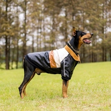 Jacket Motor Husky Doberman Coat Warm Rabrador Large Dogs Winter Medium Fashion PU