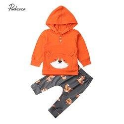2019 bebê primavera outono roupas da criança do bebê da menina meninos raposa algodão bolso com capuz tops + calças 2pcs roupas de inverno