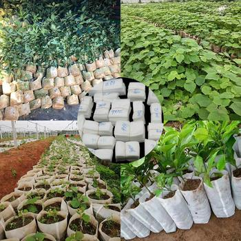 100Pcs/Set Degradable Plant Nursery Bags Seeds Growing Container Garden Tool image