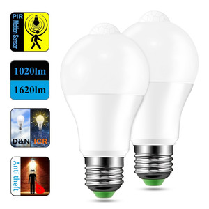 Dusk to Dawn LED Smart Lightin