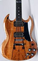 Eagle. Butterfly, electric bass, electric guitar custom shop,23 pin ebony fingerboard, horn electric guitar. Customer specific