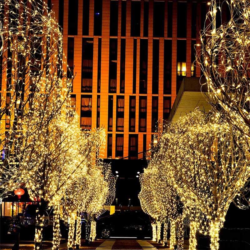 Luzes de Natal Ao Ar Livre LEVOU