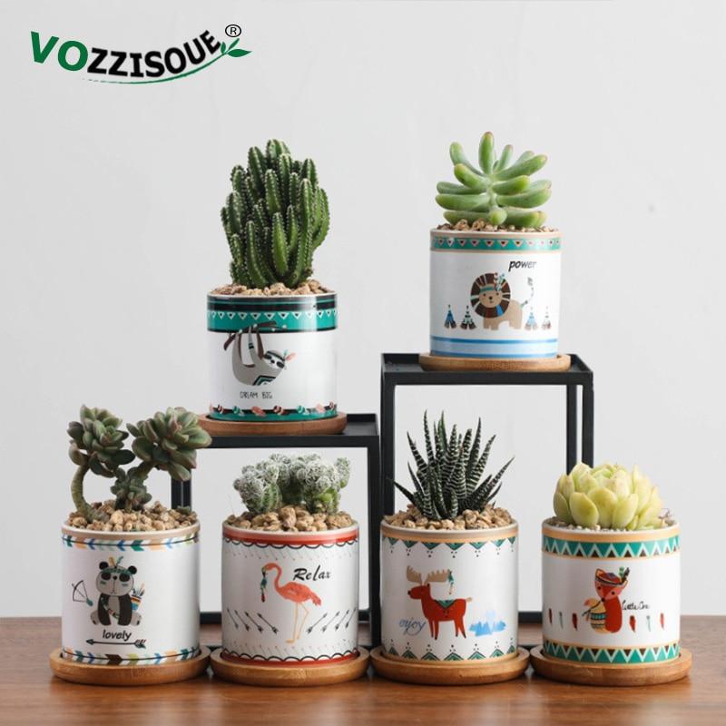 Plant Pot Indoor Succulent Bonsai