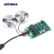 AIYIMA 2 Inch Audio Portable 25W Resonance Vibration Speaker TPA3118 Bluetooth 5.0 Amplifier Sound Neodymium Altavoz DC 12V 5A