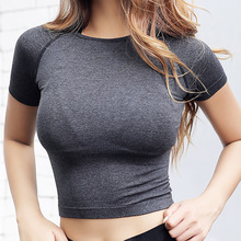 Nepoagym Quick Dry Women Cropped Seamless Short Sleeve Top  Womens Workout Tops  Sports Wear for Women Gym  Women Sexy Shirt