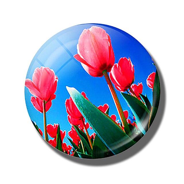 Magnetic Refrigerator Pink Variegated Tulip Note Holder