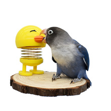 Stand Perching-Stick Parrot-Toys Bird-Cage Lovebird Toys-Supplies Platform Moving Relieve-Stress