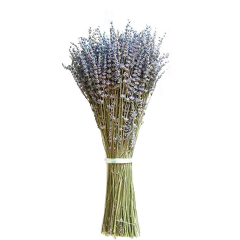 About 100 Sticks Beautiful Natural Lavender Bouquet Dried Flowers Immortal Flower Decorative  Garden Living Room Decor New