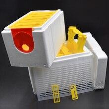 В виде пчелиных сот с Hive с сопротивлением контейнер под элемент питания 2 слоя Урожай Queen опыление Пчеловодство для пчелы вязка попадет Queen резерв Пчеловодство инструмент