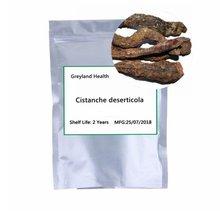 Cistanche deserticola  kidney tonifying yang strengthening pain