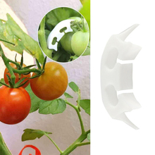 50pcs Tomato Fixing Clip Fruit Sapling Reinforcement Clip Spike Handle Anti-Bend Watermelon Hanging Seedling Clip Hanging Mand