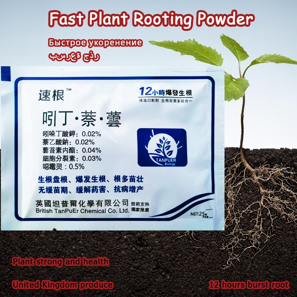 25g Bonsai Fast Plant Growth Root Medicinal Hormone Regulators Growing Seedling Recovery Germination Vigor Aid Fertilizer Garden(China)