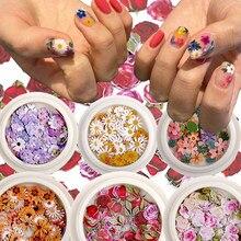 Kolor paznokci mieszane kwiaty drewno pulpy kawałek mała stokrotka róża świeże duszpasterskie paznokci suszony kwiat łatka DIY zdobienie paznokci dekoracje